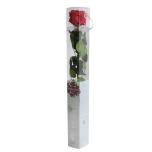 Stabiliseeritud Roos Amorosa Standard Kinkekarbis punane