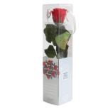 Stabiliseeritud Roos Amorosa Mini Kinkekarbis Punane