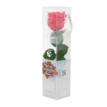 Stabiliseeritud Roos Amorosa Mini Kinkekarbis Tumeroosa