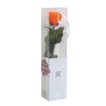 Stabiliseeritud Roos Amorosa Mini Kinkekarbis Oranz