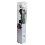 Stabiliseeritud Roos Amorosa Premium Kinkekarbis valge