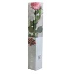 Stabiliseeritud Roos Amorosa Premium Kinkekarbis pastellne roosa