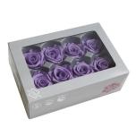 Stabiliseeritud Roos Medium 8tk karbis lilla