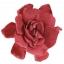 GAR1470-01-gardenia.jpg