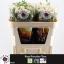 product/img.ozexport.nl/KRROYP7-LIVE_fotos-0x95F83EDE963B4F7FB58F3E3C393976EC8A4BB2DE.jpg