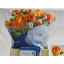 product/img.ozexport.nl/LRANOR-LIVE_fotos-0x67ADE6535DD6E570943AFA679AEB38441F2C83CB.jpg