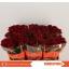 product/img.ozexport.nl/RREVO5-LIVE_fotos-0xBC1B5467D38FE1A5B9D3D8C4D77D1CF410E86983.jpg