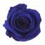 RME3630-01-rosa-medium - Copy.jpg
