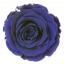 RSX2630-01-rosa-extra.jpg