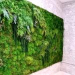 moss + green