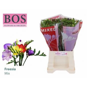 product/img.ozexport.nl/LFREMIX5-LIVE_fotos-0x86D5D23F75D7868F91390CF6D9538911F8602E61.jpg