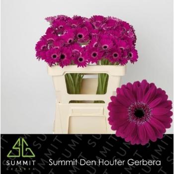 product/img.ozexport.nl/LGERMNAV-LIVE_fotos-0xF516CEEFA19AB2288A0453898957E5DA1189D6B2.jpg