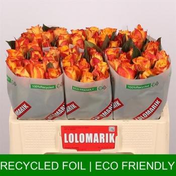 product/img.ozexport.nl/RMAR5C-LIVE_fotos-0x1D22BE427DCD686A65D7F472016997FA344FEC0A.jpg