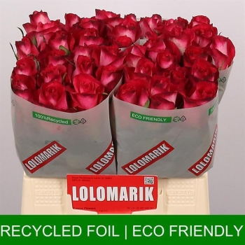 product/img.ozexport.nl/RNIC4-LIVE_fotos-0x904C875763FB220F5E761591B37AFADA4B88C463.jpg