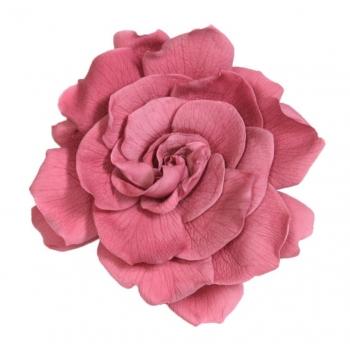 GAR1480-01-gardenia.jpg