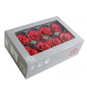 RME3490-03-rosa-medium.jpg