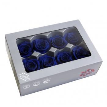 RME3630-03-rosa-medium.jpg