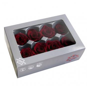 RME3710-03-rosa-medium.jpg