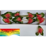 Anthurium Flamingolill Mars Improved x8