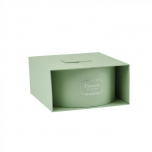 Alice Surprise Box (Lined) Green