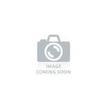 Hydrangea Hortensia 15cm