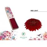 Gerbera mini Pom Red Light*30