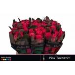 Roos 40cm Pink Tacazzi