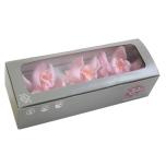 Stabiliseeritud Cymbidium Pastel Pink 3tk