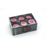 Stabiliseeritud Pargiroosid Vintage Pink 6tk