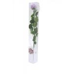Stabiliseeritud Roos Amorosa Standard Kinkekarbis lilla 1tk