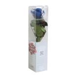 Stabiliseeritud Roos Amorosa Mini Kinkekarbis Sinine 1TK