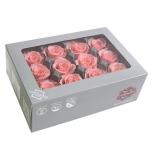 Stabiliseeritu Rosa Mini Vintage Pink/ vanaroosa 12tk
