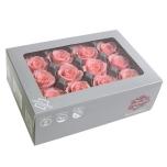 Stabiliseeritu Rosa Mini Bridal Pink 12tk