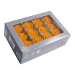 Stabiliseeritu Rosa Mini oranz 12tk