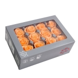 Stabiliseeritu Rosa Mini Peach/virsik 12tk
