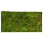 Stabiliseeritud Sammal Flat moss tile 30x60cm