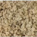 Stabiliseeritud Põdrasammal Raindeer moss tile natural 30x60cm