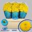 product/img.ozexport.nl/114292-55-LIVE_fotos-0x26F9FF88EC4B64E4A38E8D39071C7995D687DCEA.jpg