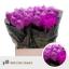 product/img.ozexport.nl/14554-70-LIVE_fotos-0x485D16C6A2DA8EA2B9DC53E3C9FE4FEAB26280B0.jpg