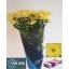 product/img.ozexport.nl/CHRBALY-LIVE_fotos-0x271B463778289621904E518E9FB15F6C47B75C0F.jpg