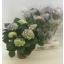 product/img.ozexport.nl/HYDEB14-LIVE_fotos-0x8D532F9D71BE4610DE42B2D2FBD1678E6C44F363.jpg