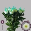 product/img.ozexport.nl/LCHRMA-LIVE_fotos-0x3A8963C5F4E56D927BEA0C460A0B49DAC9602777.jpg