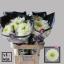 product/img.ozexport.nl/LCHRMA-LIVE_fotos-0x6E4801FAE3F4216EB3F2433C4E0B1D163FF0DD92.jpg