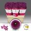 product/img.ozexport.nl/LCHRSANLIT-LIVE_fotos-0x2C5EBEA21A00F04AA4C1C7192795521CDCAEA08F.jpg