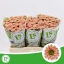 product/img.ozexport.nl/LCHRSANROSSMO-LIVE_fotos-0xD0443A16B4BEEB6E09A8EC8AC878F4FF60C2F275.jpg