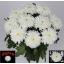 product/img.ozexport.nl/LCHRZEM-LIVE_fotos-0xC0D5EB07BCAD80BBF403D88295B1AFDEC66AF86C.jpg