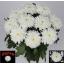 product/img.ozexport.nl/LCHRZEM-LIVE_fotos-0xE9B8ECE1C2E93AB3E7624E89003D7CDB19A4A78F.jpg
