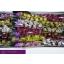 product/img.ozexport.nl/LCYMMI5-LIVE_fotos-0x67068A802BD1DE8F1568907D42E13F8C6B5B1CDF.jpg