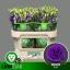 product/img.ozexport.nl/LEUSROBLU-LIVE_fotos-0x57F1F34491CC1AB840AEEE6079522CE4BC8B0971.jpg