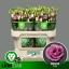 product/img.ozexport.nl/LEUSROROP-LIVE_fotos-0xC2301E946AC97911C4F304F6AFCC6C9C0CCAD7C3.jpg